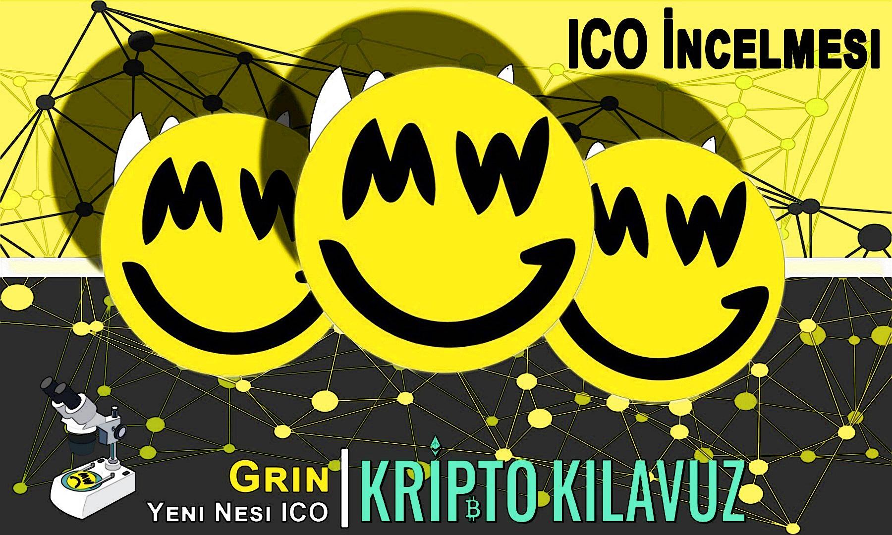 ICO İncelemesi: Grin
