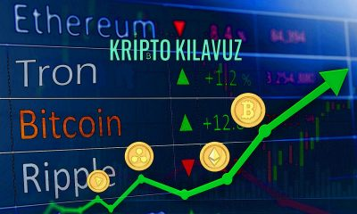 KriptoPara'dan Olası Bir Boğa Piyasasında Patlama Yapabilecek 4'ü