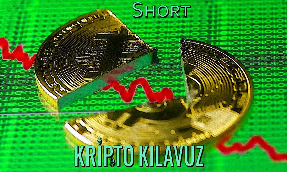 Ayı Piyasası Short İşlemi