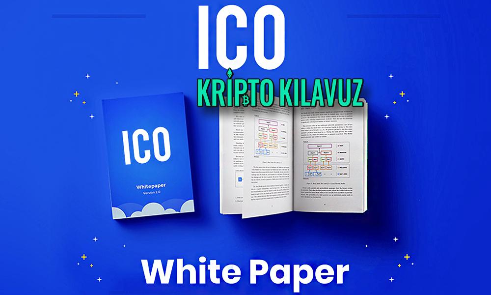 Whitepaper Nedir, Nasıl Yazılır?